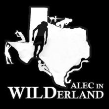 Alec in WILDerland