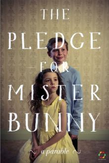 The Pledge For Mister Bunny 2013