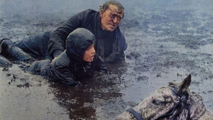 Scene from Run Wild, Run Free (1969)